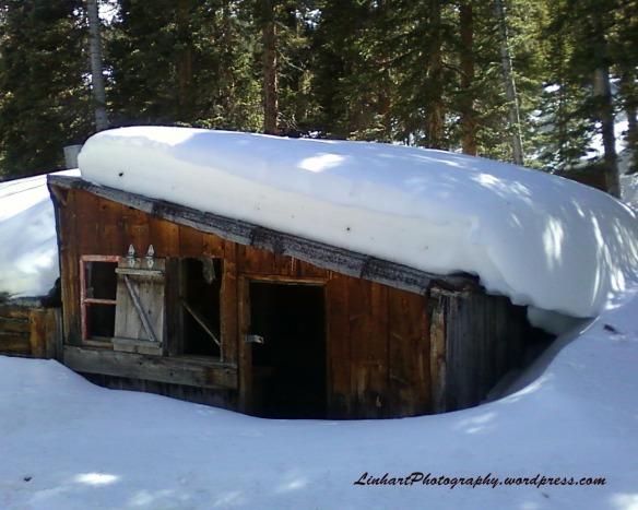 Hunkidori Mine - abandoned cabin