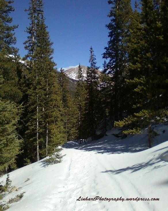 Hunkidori Mine Trail