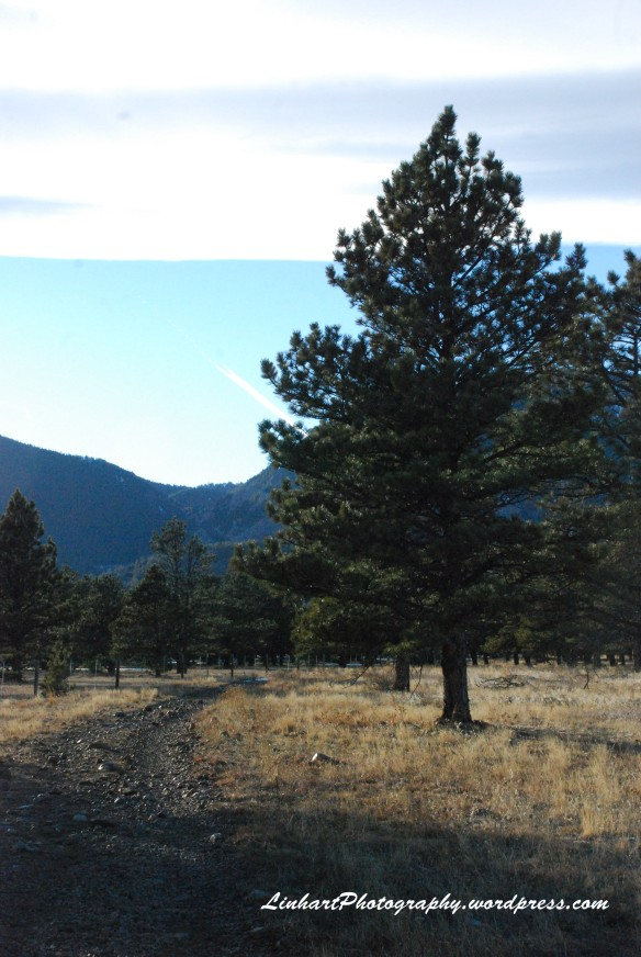 Flatirons Trail