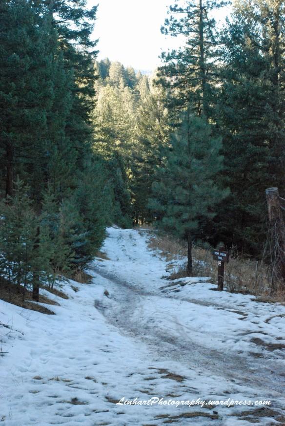 O'Fallon Park-Trail