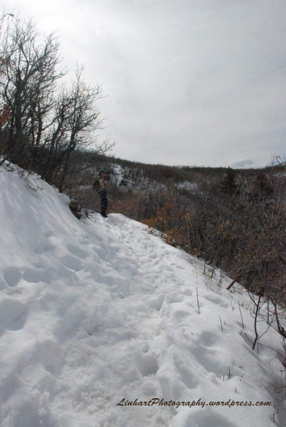Roxborough Park-Trail