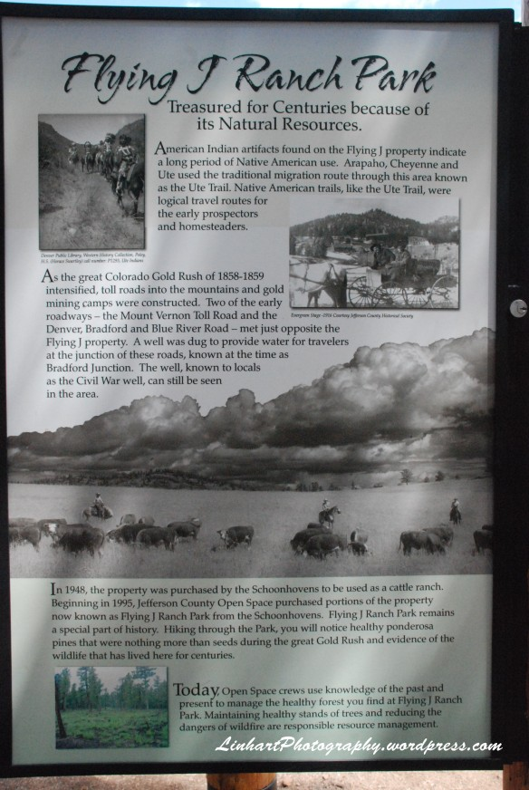 Flying J Ranch History