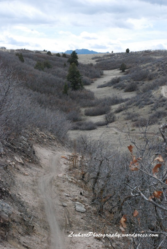 Ridgeline Open Space