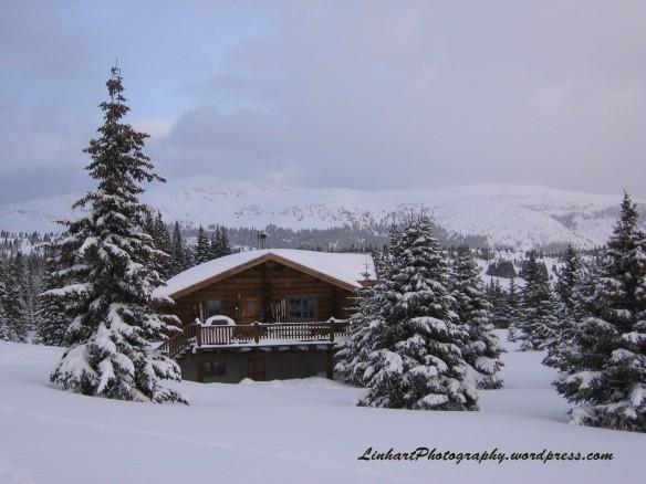 Chuck's Cabin-Walter's Hut