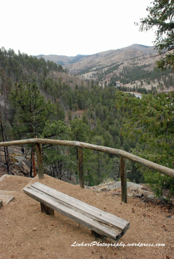 Pine Valley Ranch-Bench