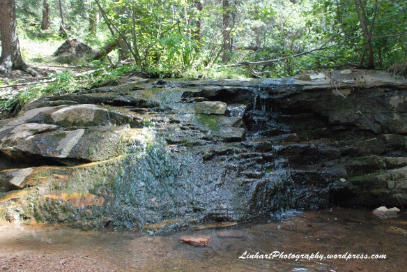 Maxwell Falls-Aug 2011