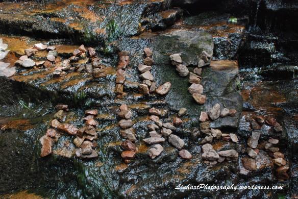 Maxwell Falls-Daily Hiker