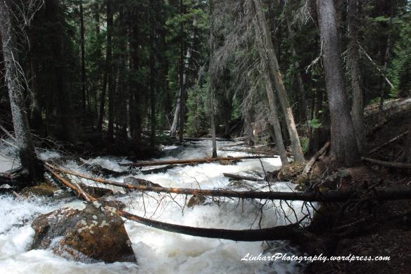 Lower Cataract Lake-Inlet Stream