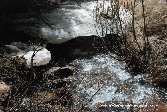 Staunton State Park-ice along creek