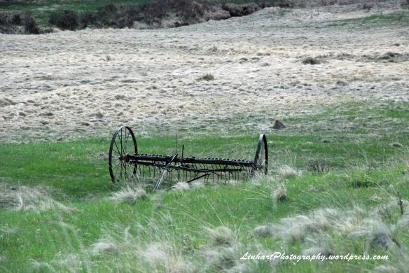 Staunton State Park-farm rake