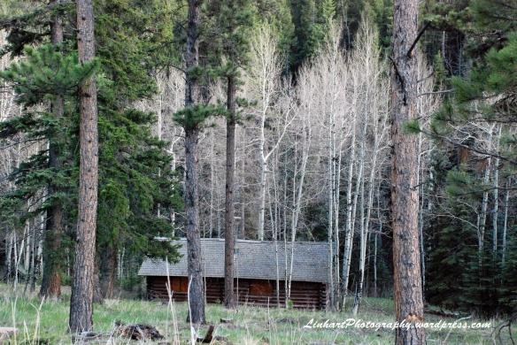 Staunton State Park-cabin