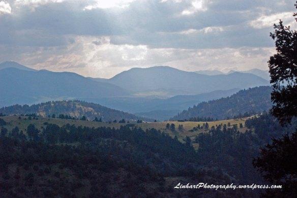 Mt Falcon Park-