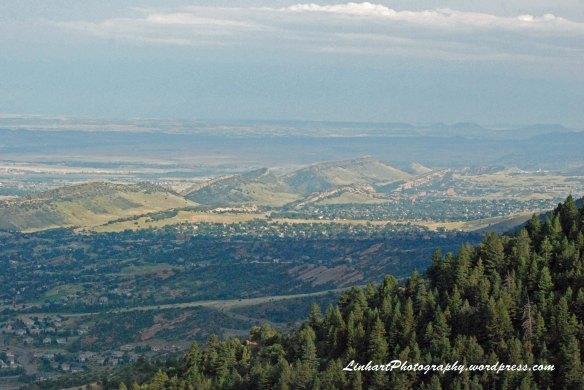 Mt Falcon Park-Hogback