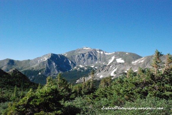 Mt. Harvard-Trail