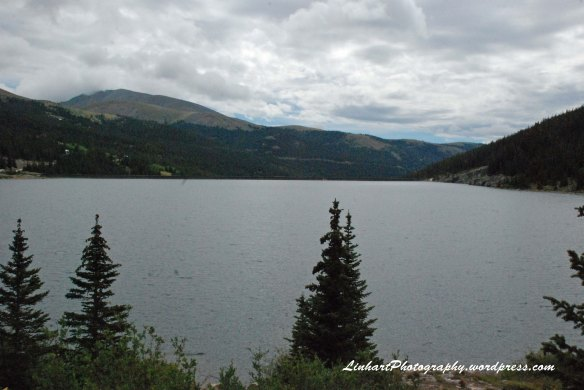 Wheeler Lake-Montgomery Reservoir