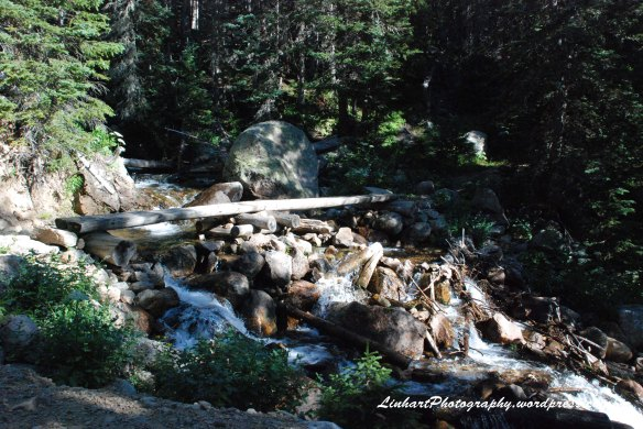 Forest Lakes-stream crossing