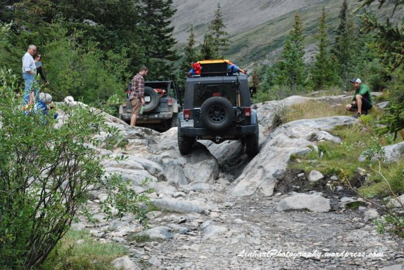 Wheeler Lake-jeep