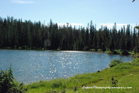 Forest Lakes-lower lake