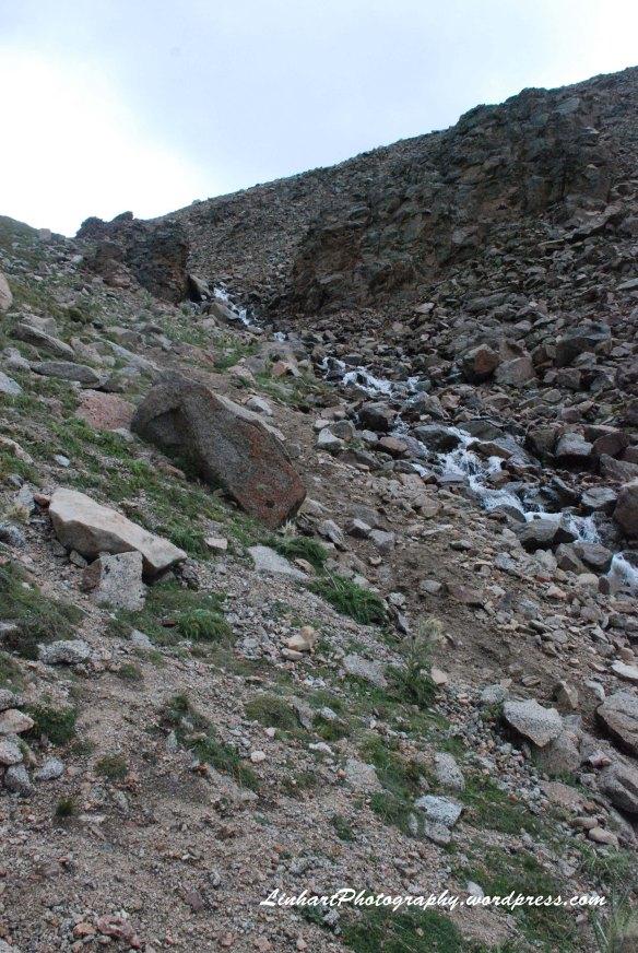 Mt. Evans-Gulley