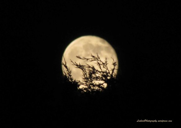 Friday the 13th Full Moon