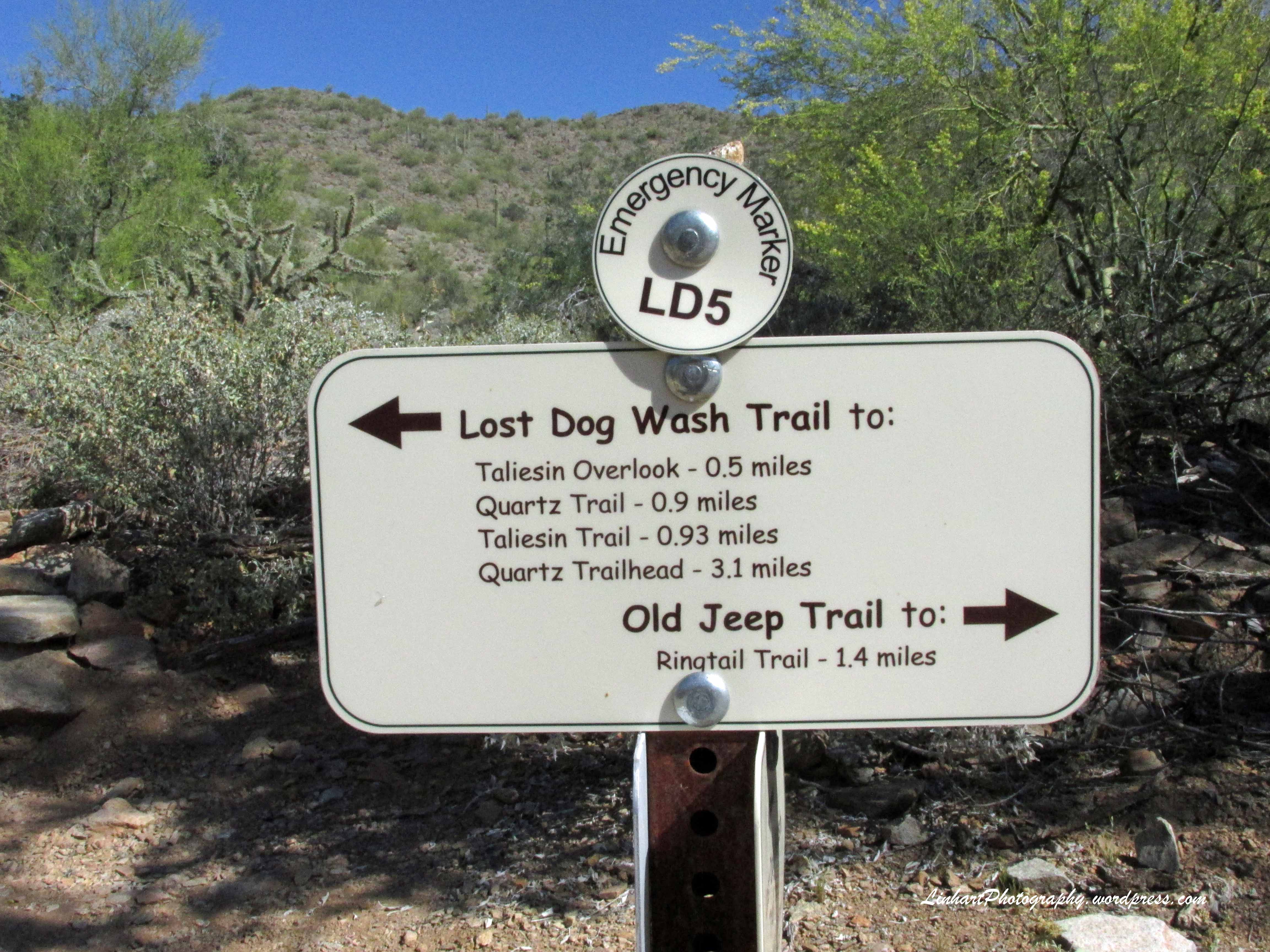 Lost Dog Wash Trail Linhart Photography